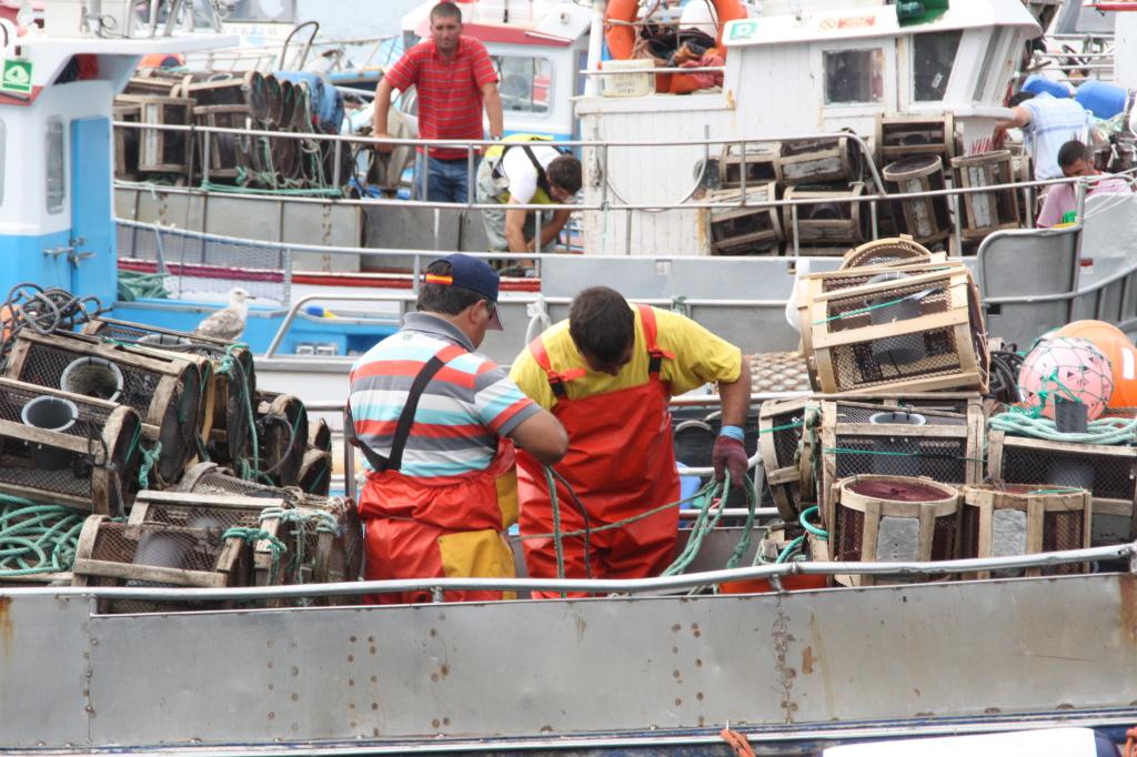 Tripulantes trabajando a bordo de un buque pesquero.