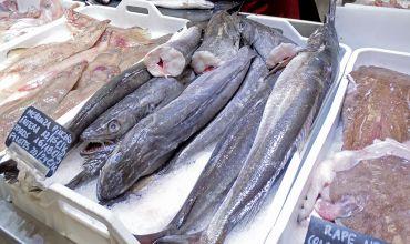 Pescadería mostrador merluza