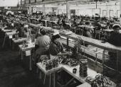 Trabajadoras en la conservera de Valcárcel en Vigo.