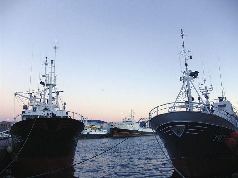 Buques de pesca de altura en Vigo.