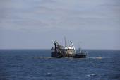 Barco de Pesca Industrial de Chile.