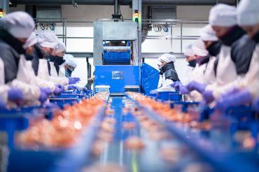 Industria conservera Galicia