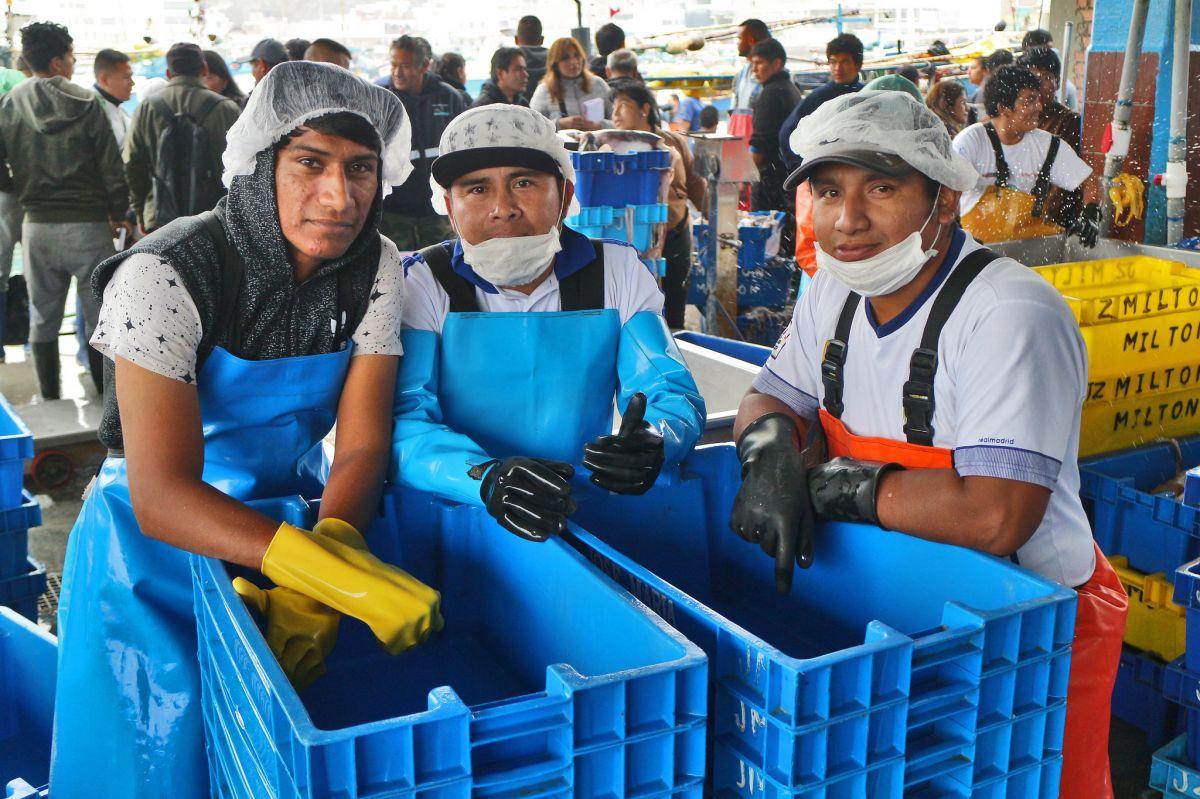 Pescadores en el puerto de Pucusana, Perú.